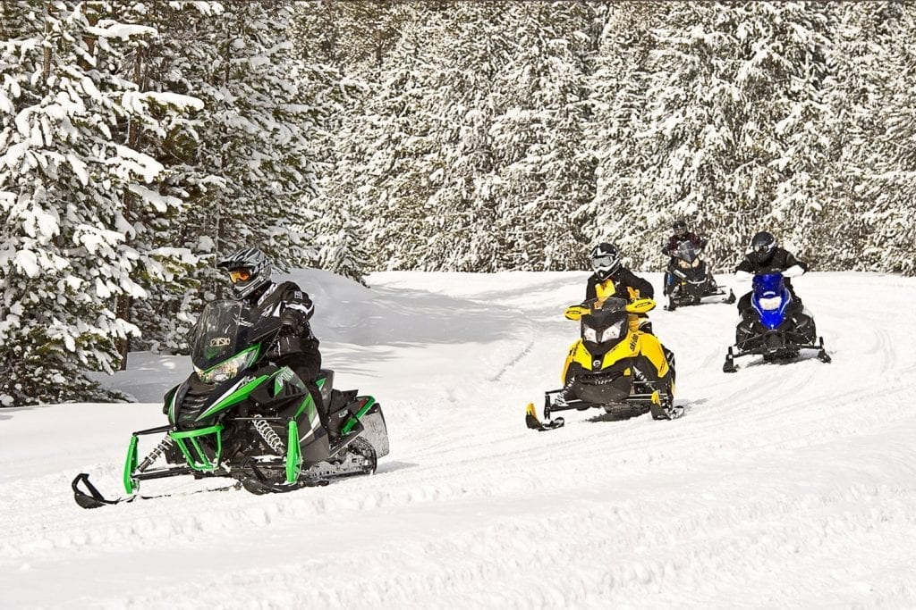 group of snowmobiles riding a wintry trail